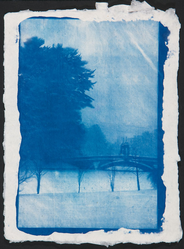 "Bridge to Valhalla | Cyanotype on hand-made paper (16"" x 20"")"