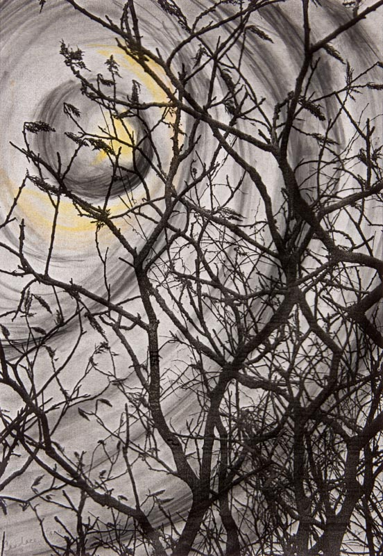 "Winter Moon | Graphite, colored pencil, acetate (18"" x 15"")"